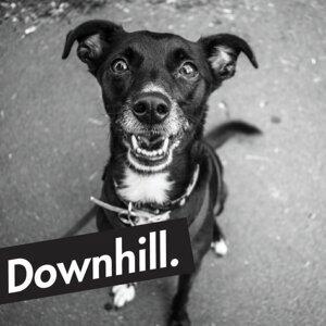 Downhill 歌手頭像