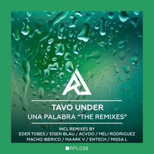 Tavo Under, Eder Tobes, Eisen Blau, ACVDO, Meli Rodriguez, Macho Iberico, Maark V, Entech, Missa 歌手頭像