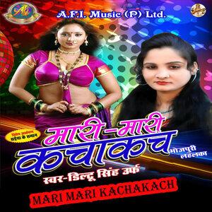 Diltu Singh 歌手頭像