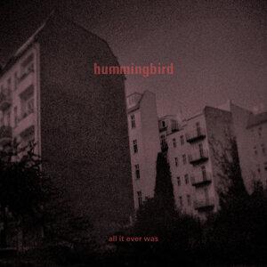 Hummingbird 歌手頭像