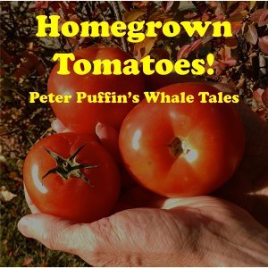 Peter Puffin's Whale Tales 歌手頭像