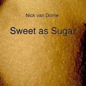 Nick van Dom 歌手頭像