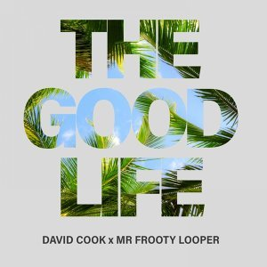 David Cook, Frooty Looper 歌手頭像