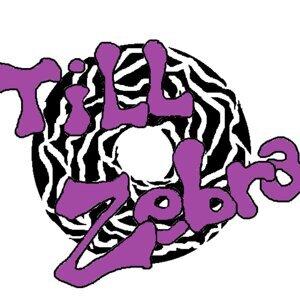 Till Zebra 歌手頭像
