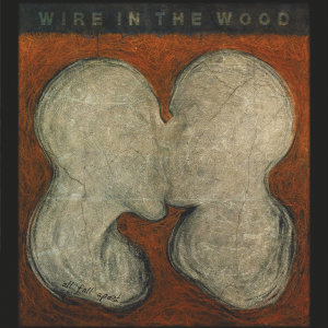 Wire in the Wood 歌手頭像
