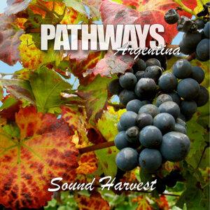 Pathways Argentina 歌手頭像