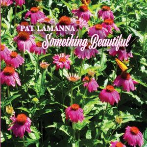 Pat Lamanna 歌手頭像