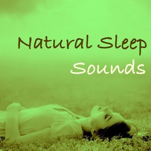 Thunderstorm Sleep & Relaxation Meditation Yoga Music & Relaxation with Nature Sounds 歌手頭像