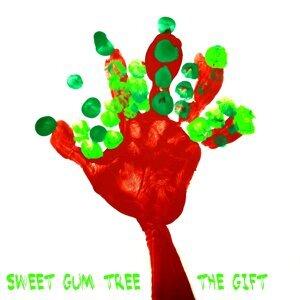 Sweet Gum Tree 歌手頭像