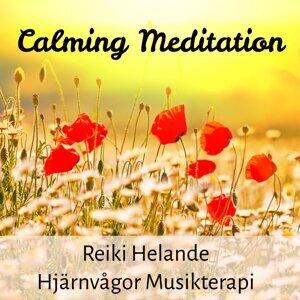 Healing Music Spirit & Dream Music & Calm Music for Studying 歌手頭像