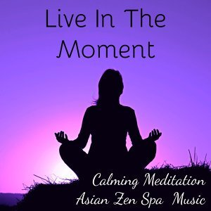 Asian Zen Spa Music Meditation & Meditation Relaxation Club & Binaural Beats 歌手頭像