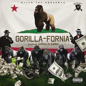 Gorilla Gang 歌手頭像