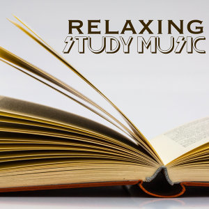 Study Music & Reading and Study Music & Studying Music 歌手頭像