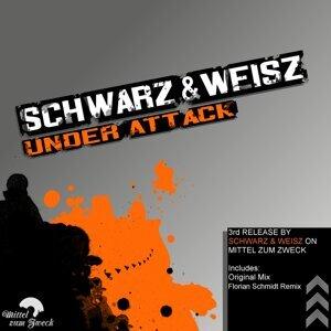 Schwarz & Weisz 歌手頭像