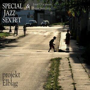 Special Jazz Sextet 歌手頭像