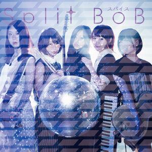 Split BoB 歌手頭像