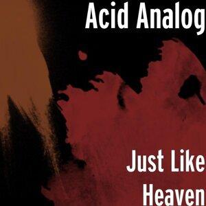 Acid Analog 歌手頭像