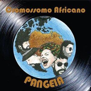 Cromossomo Africano 歌手頭像