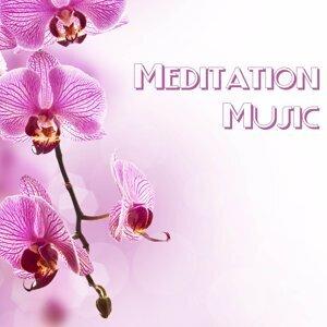 No Stress Ensemble & Massage Tribe & Massage Music 歌手頭像