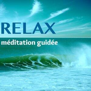 Meditation & Relaxation Big Band & Musique de Detente Maestro 歌手頭像