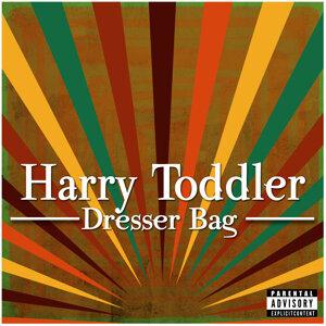 Harry Toddler 歌手頭像