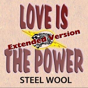 Steel Wool 歌手頭像