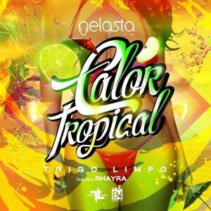 Trigo Limpo, DJ Nelasta 歌手頭像