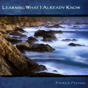 Patrick Feehan 歌手頭像