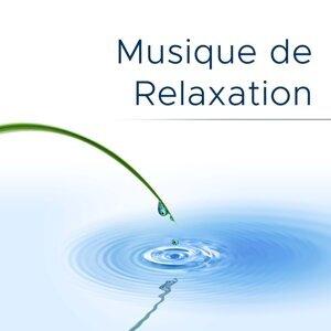 Peaceful Music Collective & Musique Piano Dream & Musique Relaxante 歌手頭像