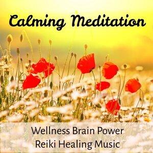 Wellness Shades & Brain Study Music Specialists & Binaural Beats Recordings 歌手頭像