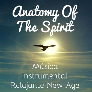 New Age Relajación Science & Nature Sounds Spa Therapy & Liquid Relaxation 歌手頭像