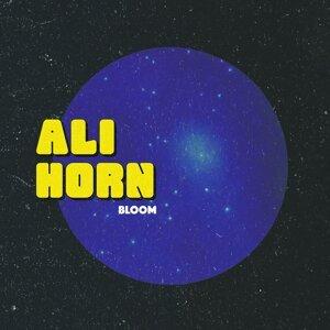 Ali Horn 歌手頭像