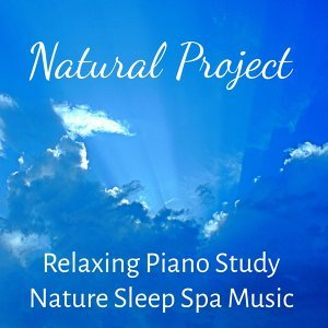 Relaxing Piano Music & Reading and Studying Music & Spa Relaxation & Spa 歌手頭像