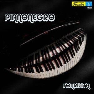 Pianonegro 歌手頭像