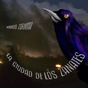 Nando Zornitta 歌手頭像
