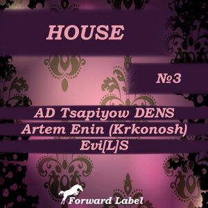 AD Tsapiyow DENS, Artem Enin (Krkonosh) & Evi[L]S 歌手頭像