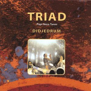 TRIAD 歌手頭像