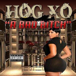 Hog Xo 歌手頭像