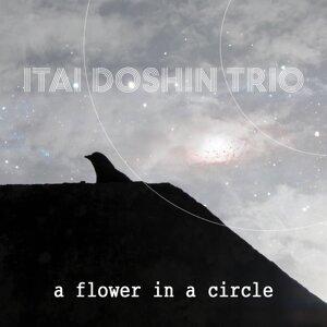 Itai Doshin Trio 歌手頭像
