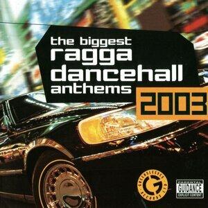 The Biggest Ragga Dancehall Anthems 2003 歌手頭像