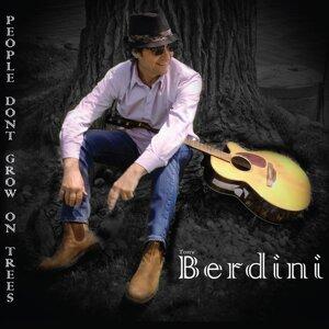 Berdini 歌手頭像