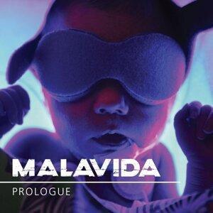 Malavida 歌手頭像