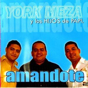 York Meza y Los Hijos de Papi 歌手頭像