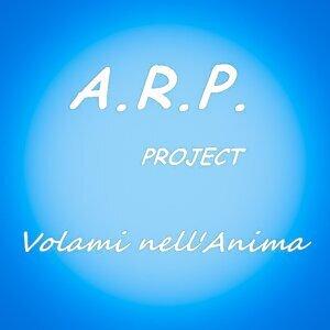 A.R.P. Project 歌手頭像