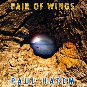 Paul Hatem 歌手頭像