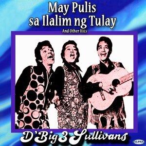 D' Big 3 Sullivans 歌手頭像