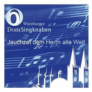 Würzburger Domsingknaben 歌手頭像
