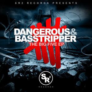 Dangerous & Basstripper 歌手頭像