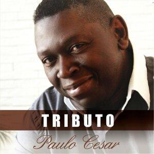 Paulo Cesar da Silva 歌手頭像