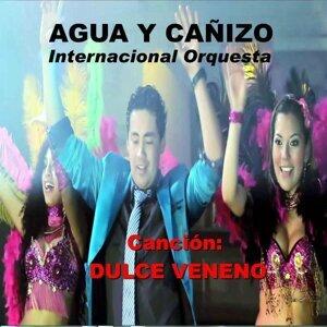 Agua y Cañizo Internacional Orquesta 歌手頭像